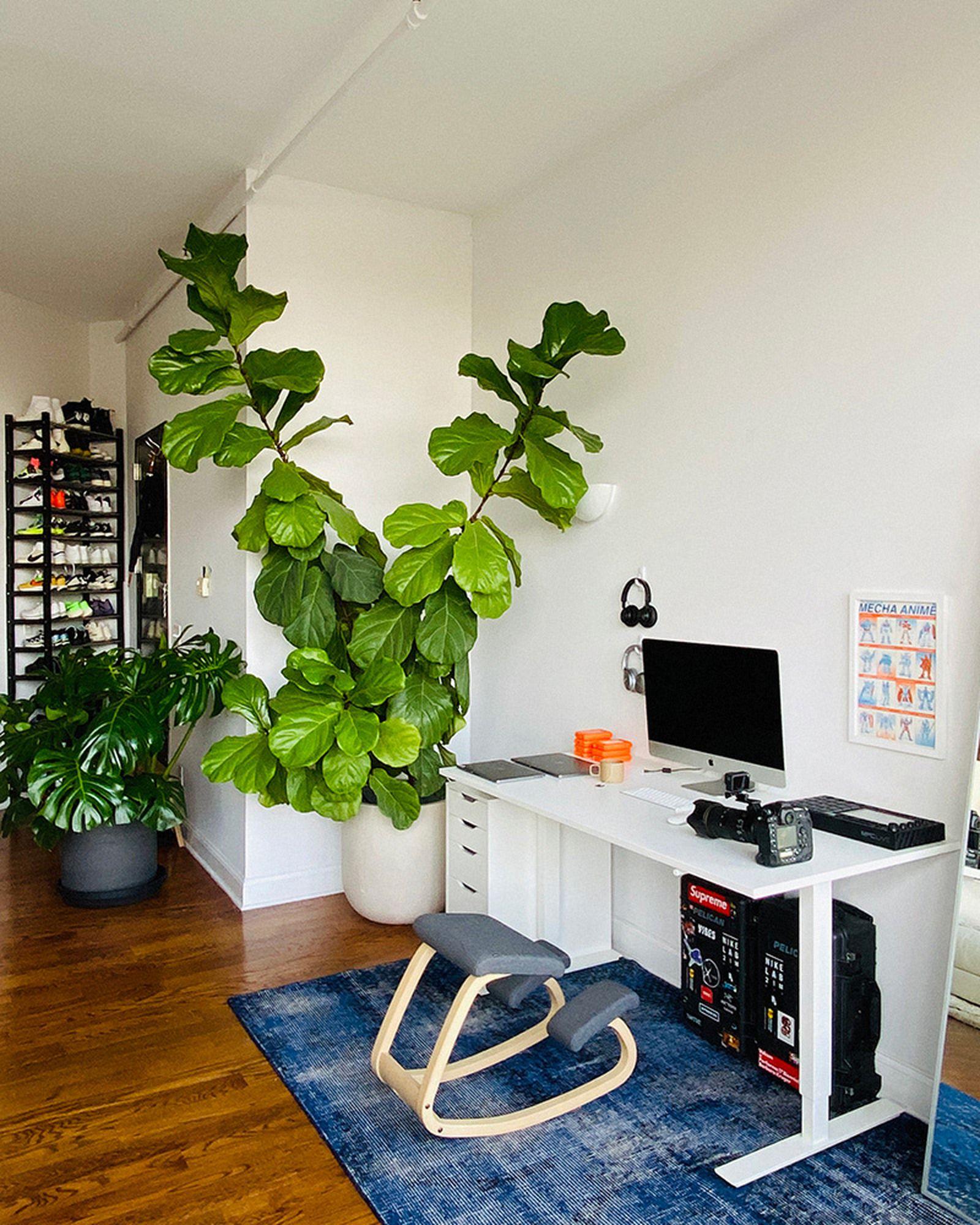 wfh-office-tour-look-inside-home-offices-tyler-joe-02