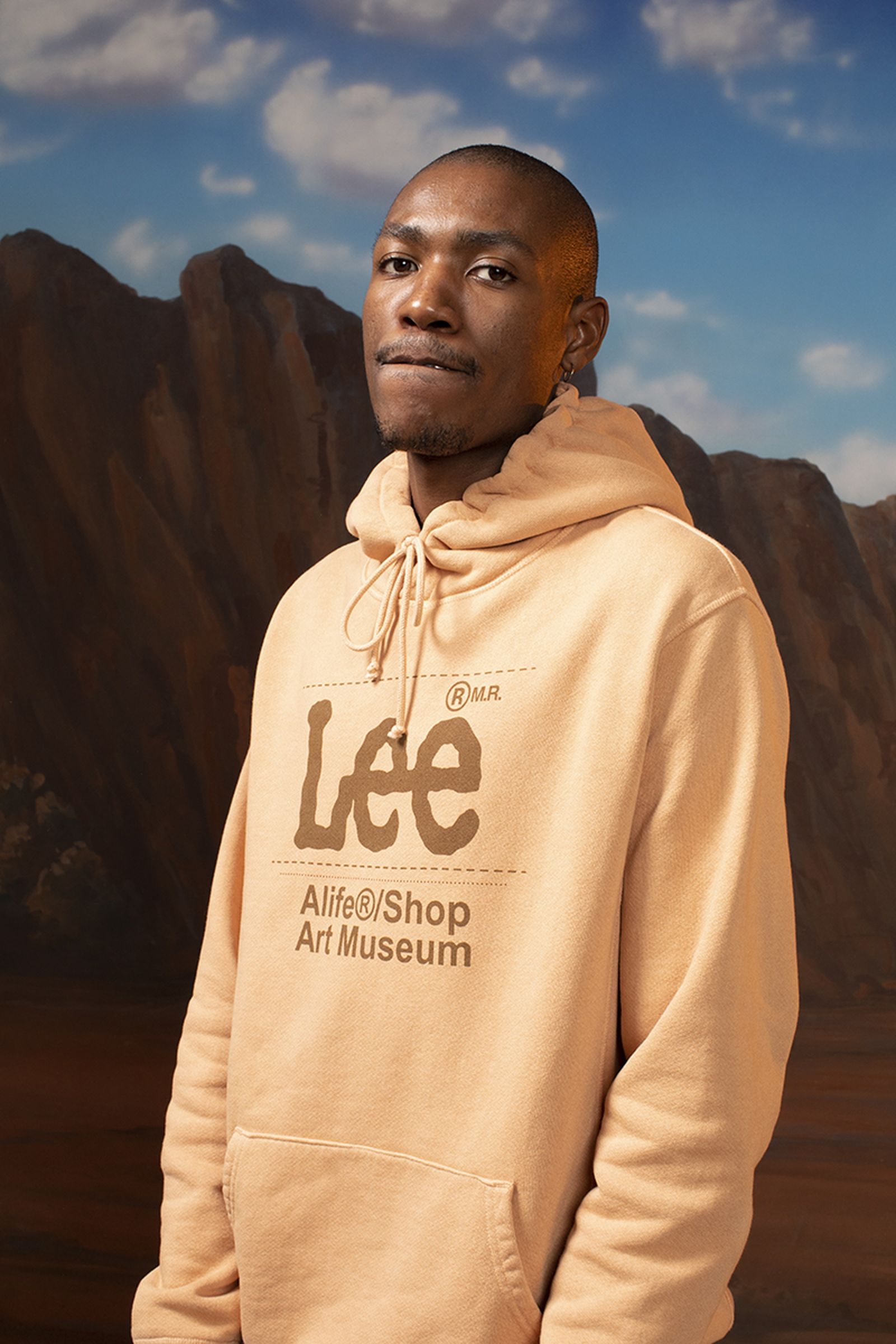 alife lee anniversary collection