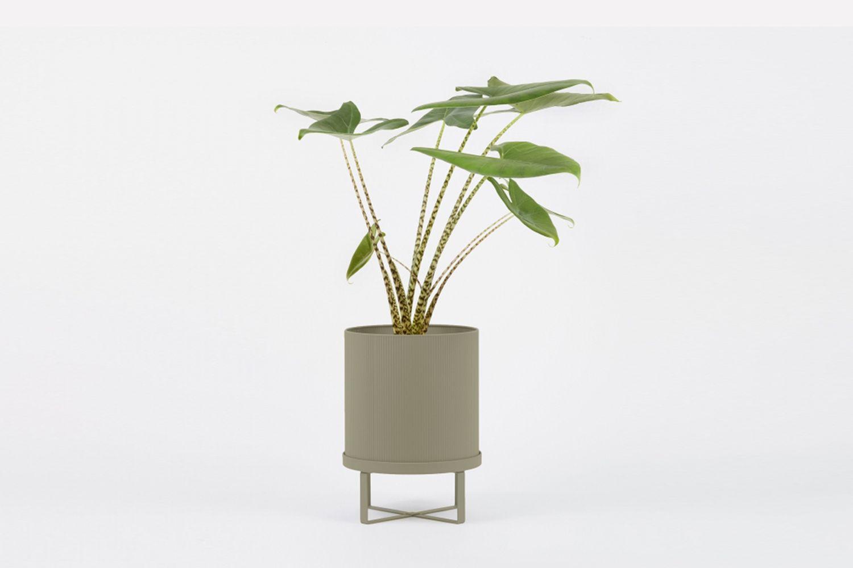 Bau Plant Pot