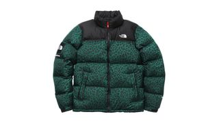 b60766b4d Supreme x The North Face: A Complete History | Highsnobiety