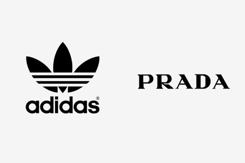 adidas prada collaboration rumor
