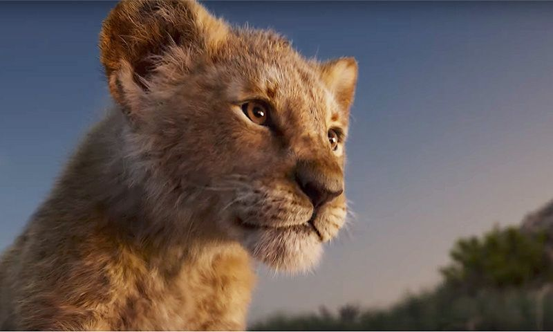 watch the stunning new trailer for disney u0026 39 s  u0026 39 the lion king u0026 39