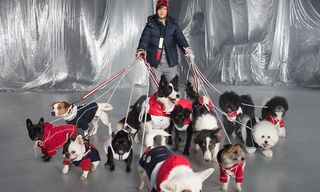 Moncler Is Releasing Shiny Puffer Jackets for Dogs