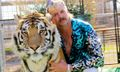 Joe Exotic's Off-the-Wall Style Is Hulk Hogan Meets Lil Nas X