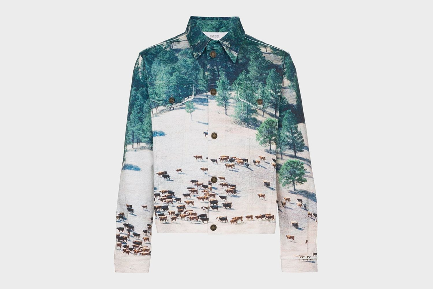 Printed Landscape Scene Denim Jacket