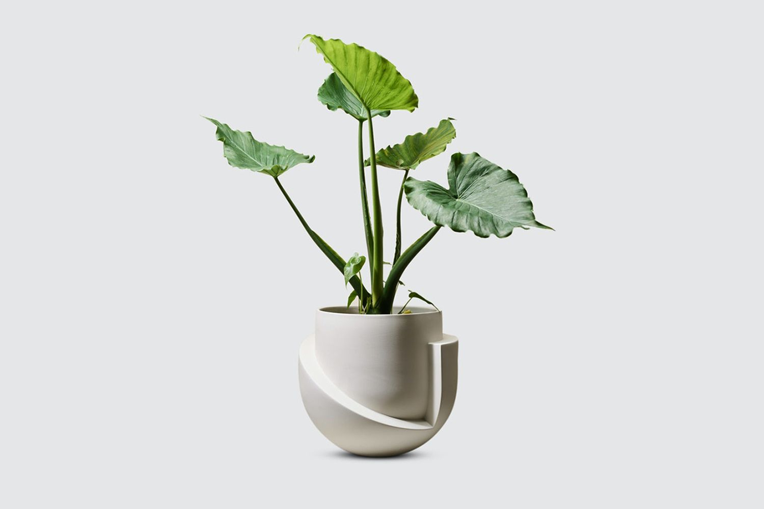 Vayu Ceramic Planter, No Drainage