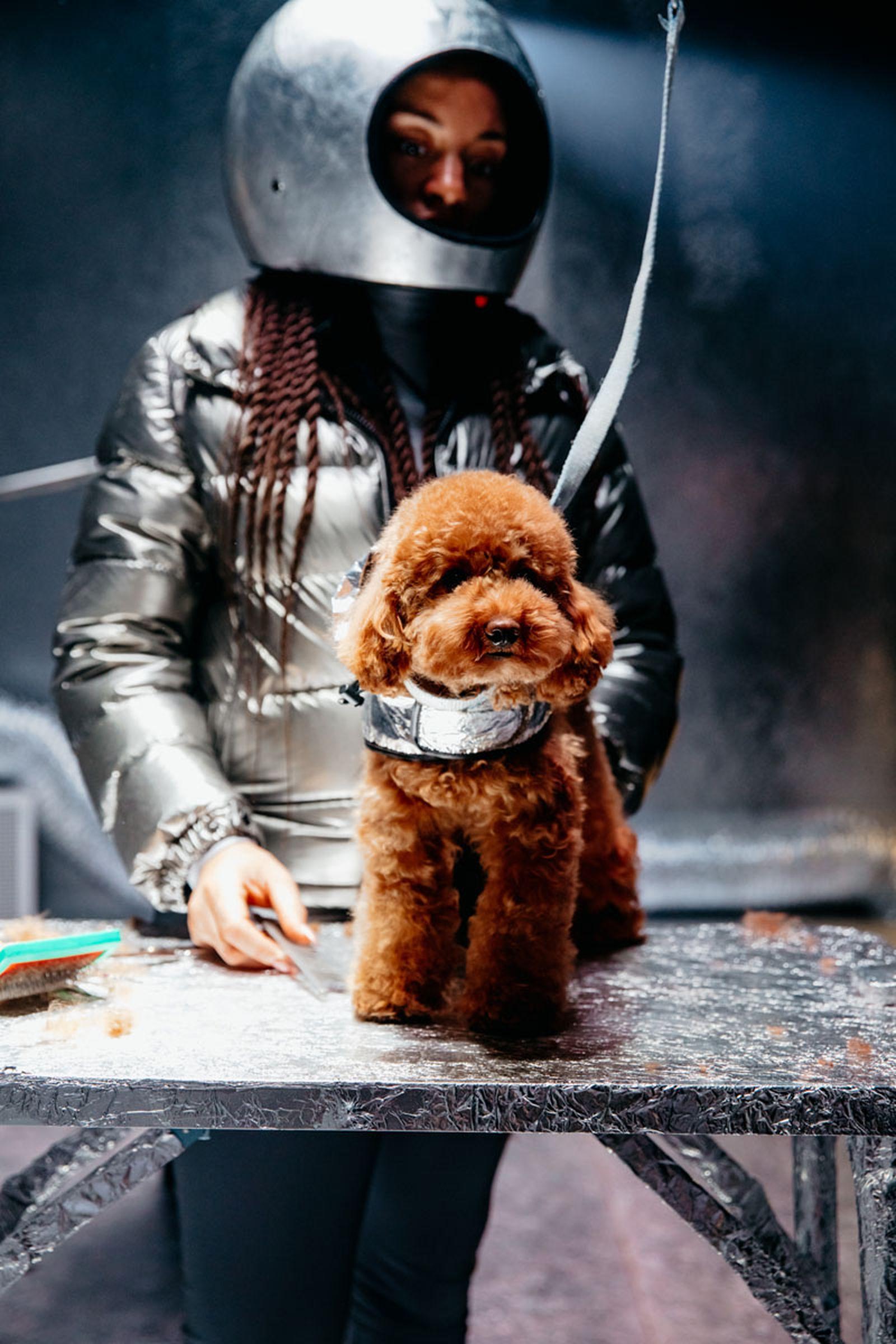 moncler-genius-fall-2020-hiroshi-dog-courture-01