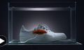 """Camille Tanoh Presents the """"Proper Sneaker"""" in this Striking Short Film"""