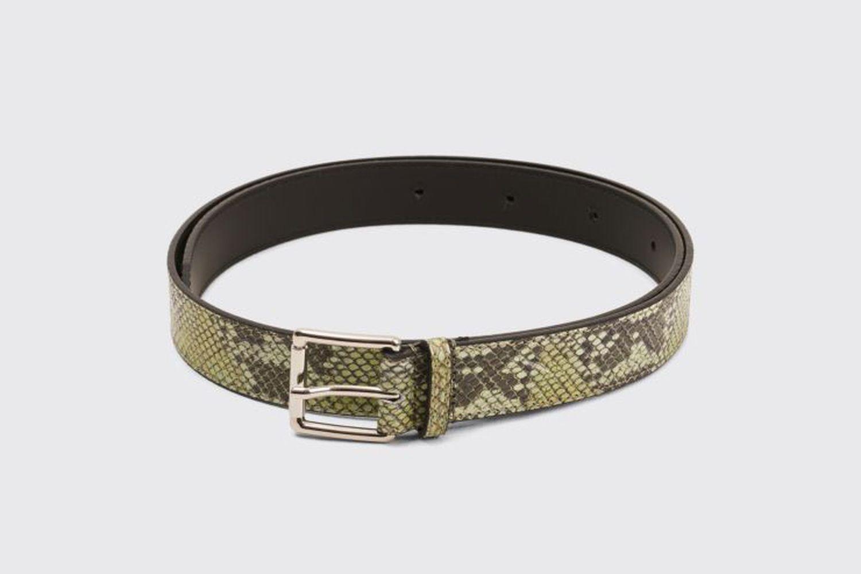 Leather Belt Snake
