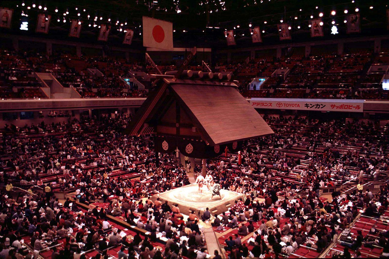 sumo wrestling guide