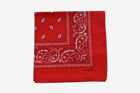 Paisley Cotton Bandana
