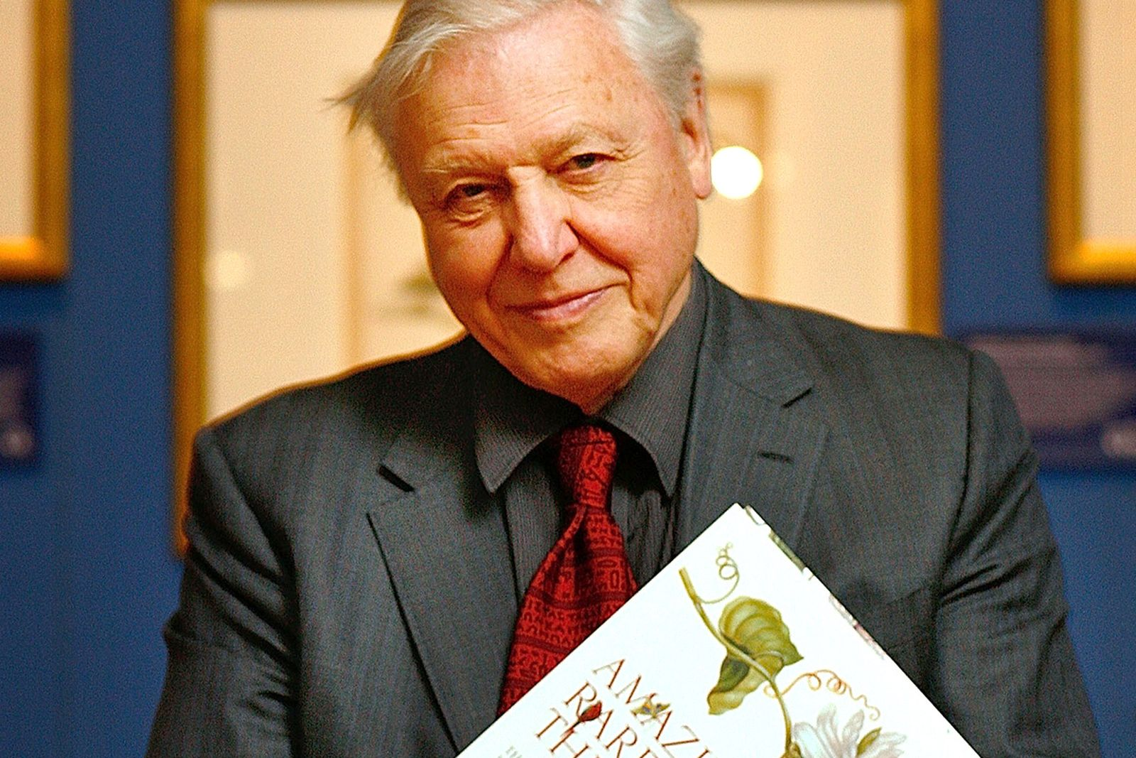 david-attenborough-instagram-main