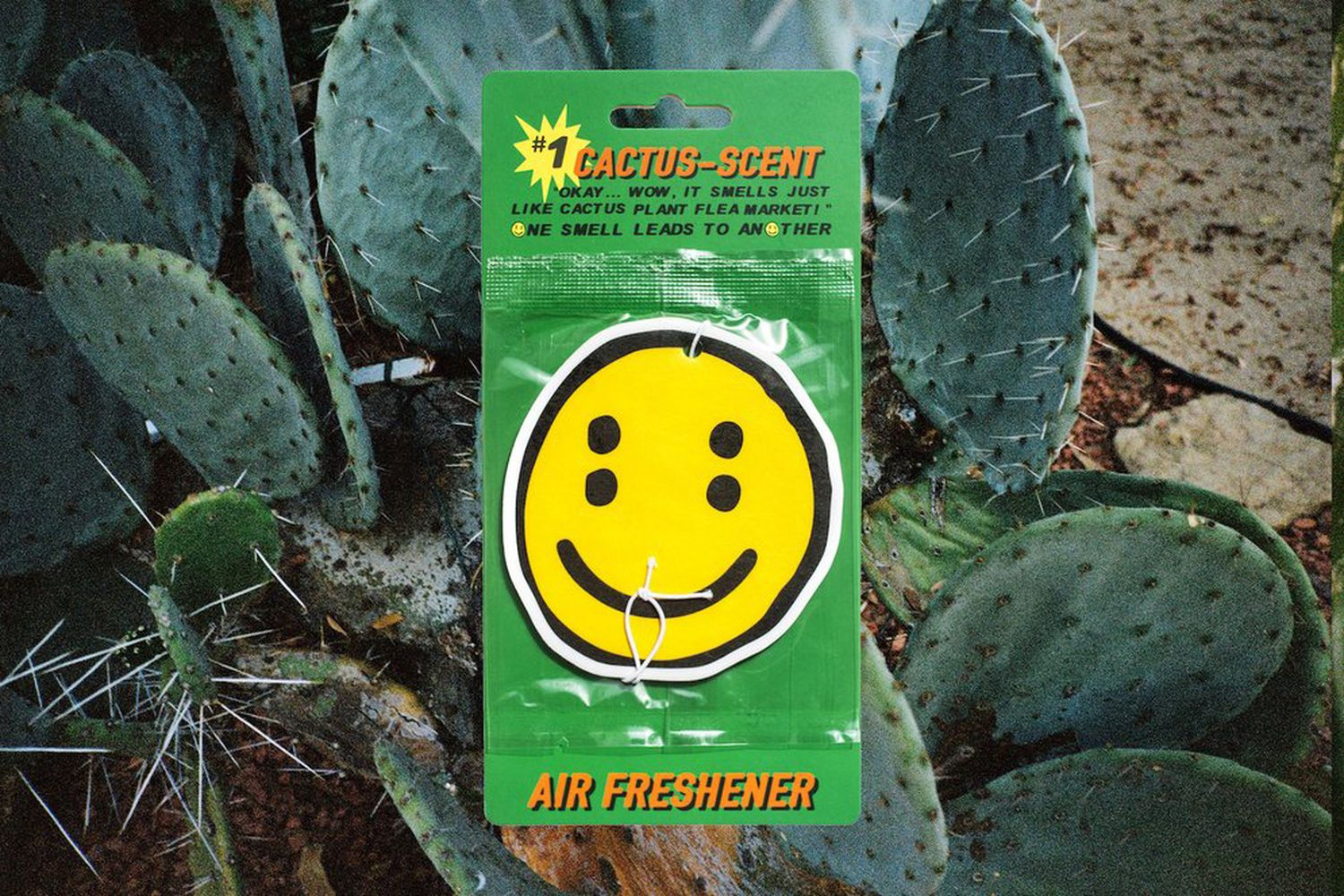 Double Vision Scented Air Freshener