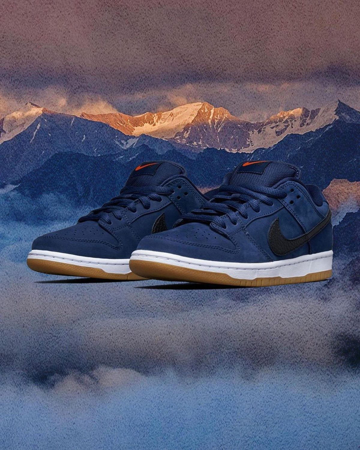 The Skate Shop-Exclusive SB Dunk Low Pro ISO Arrives in Navy 3