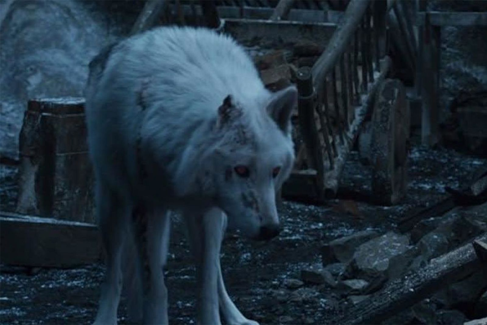 jon snow abandoned ghost game of thrones