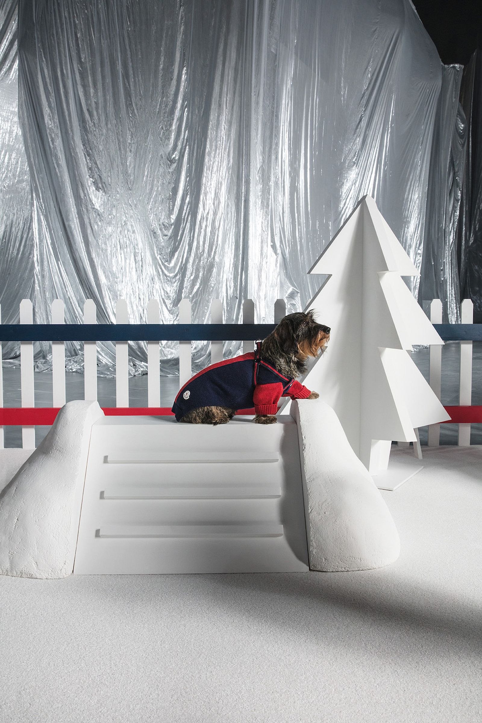 moncler dog couture fw18 Poldo Dog Couture
