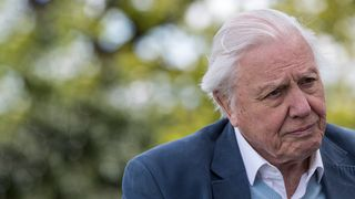 david attenborough remix competition