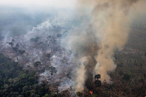 lvmh group amazon wildfires Aaron Paul Death Row Records Nike