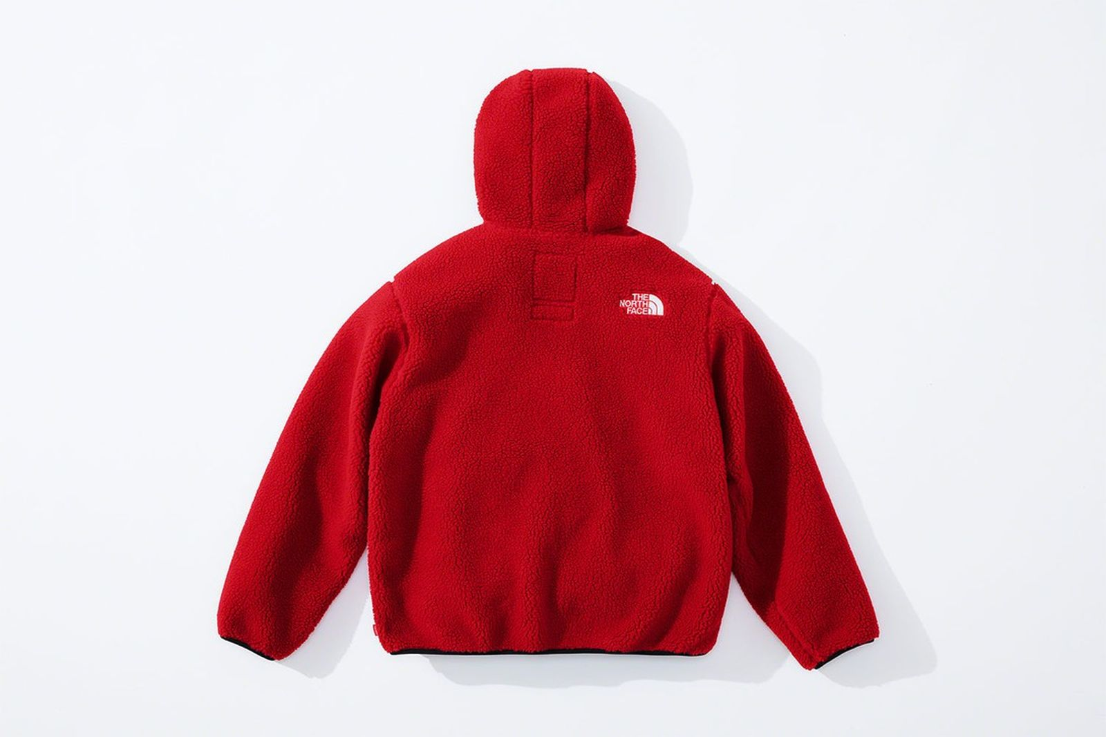 the-north-face-supreme-fw20-product-19