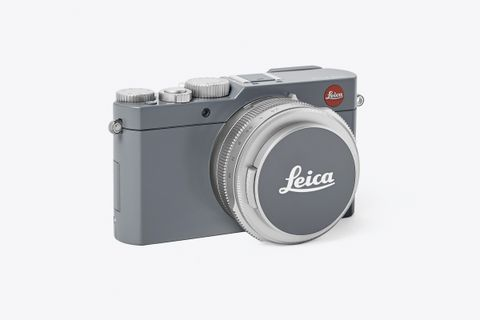 D-Lux Compact Camera