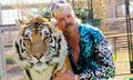 The Most Hilarious Joe Exotic 'Tiger King' Memes