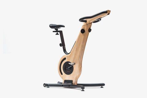 Bike Ash