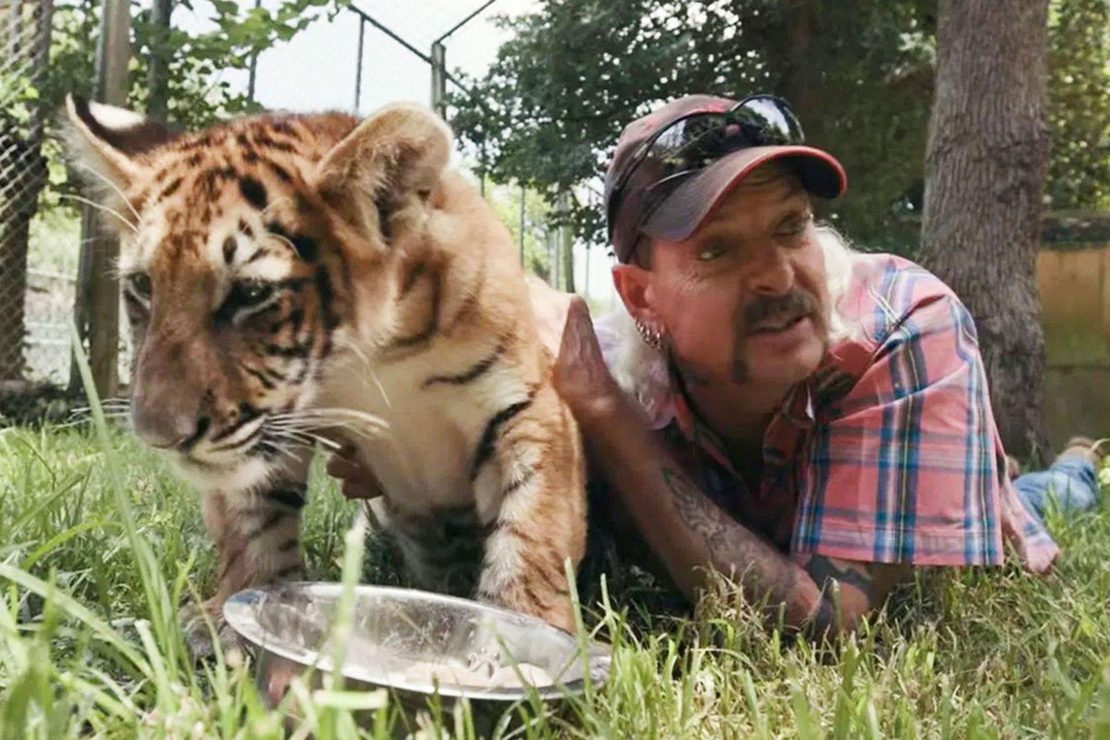 tiger-king-special-main