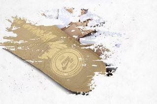 on sale 8e4eb 4625a Premier Nike SB Dunk High Premium