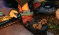 Nicole McLaughlin's Crocs Collab Doubles as a Survival Kit