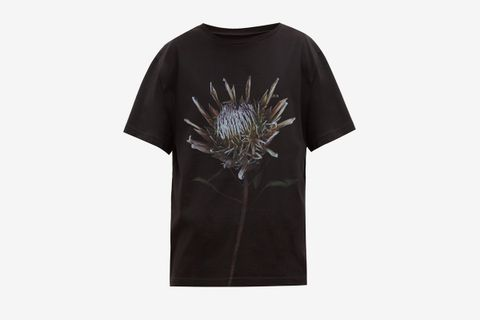 Thistle Print Cotton T-Shirt