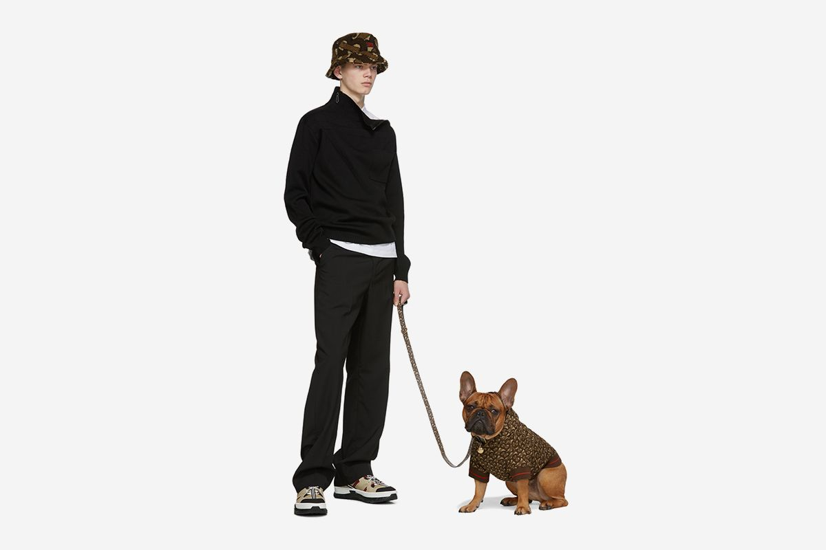 You Can Now Shop Marine Serre, MISBHV & Burberry for Your Dog