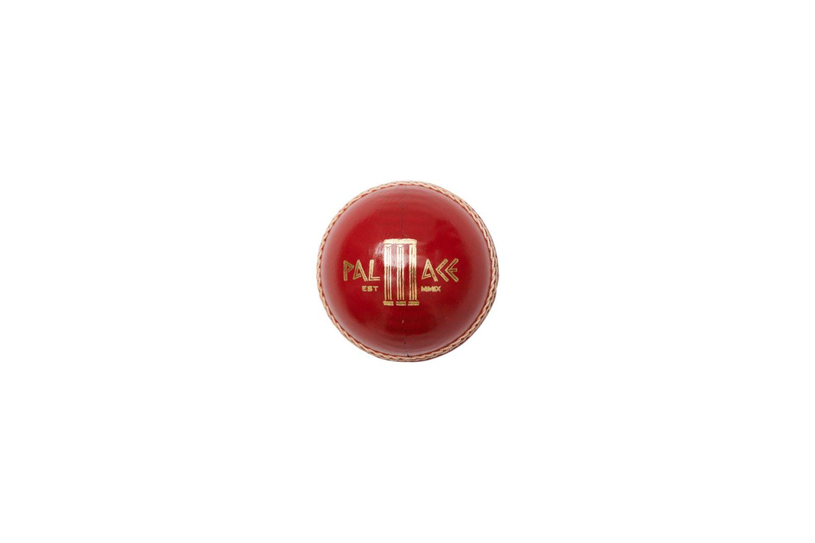 palace-fall-winter-2021-cricket-bat-ball- (4)
