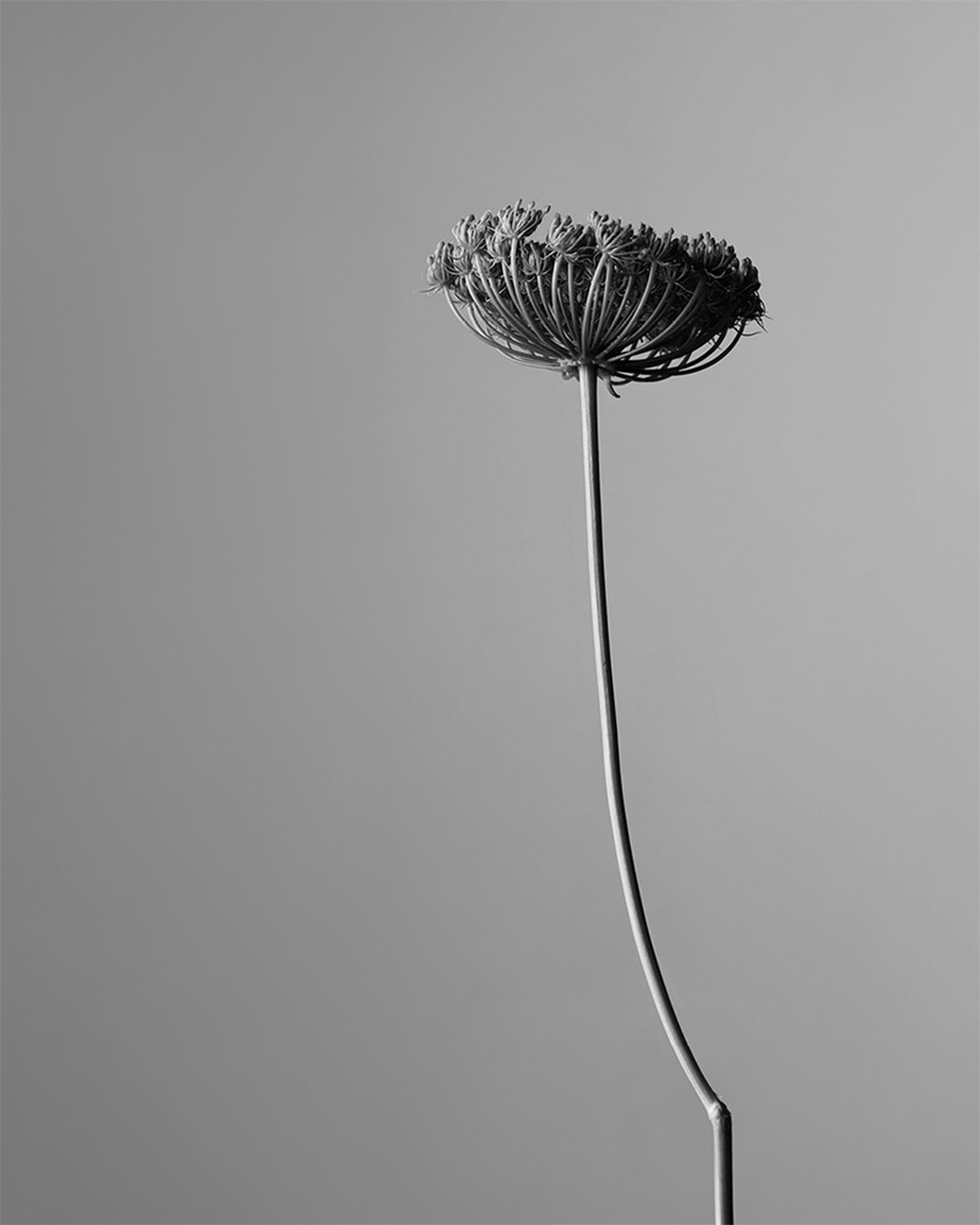 aesop-othertopias-fragrance-collection-05