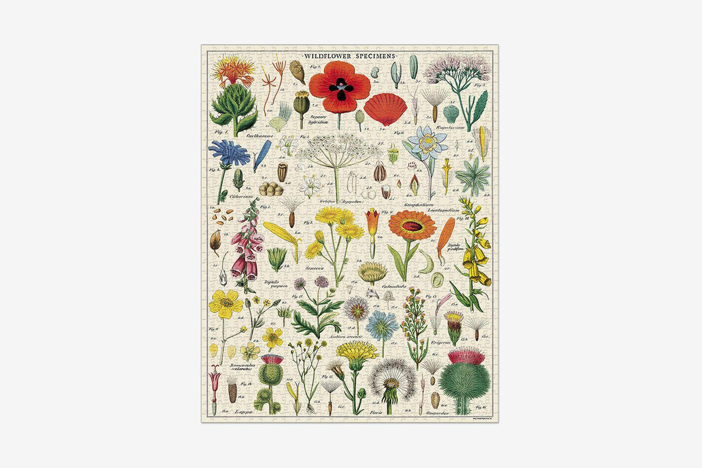1000 Piece Vintage Puzzle Wildflowers