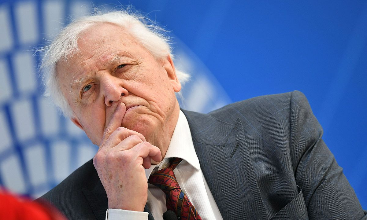 David Attenborough Is Hosting Online Geography Lessons