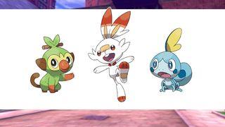 pokemon sword shield nintendo pokemon: shield pokemon: sword