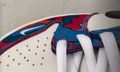 Parra Teases New Nike SB Dunk Low Collab