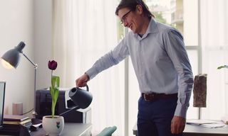 Google Home Now Lets You Talk to Your Tulips