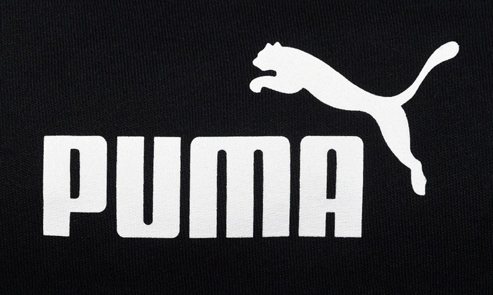 Image result for puma logo