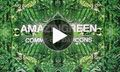 POST for Comme des Garçons 'Amazingreen' Fragrance Film