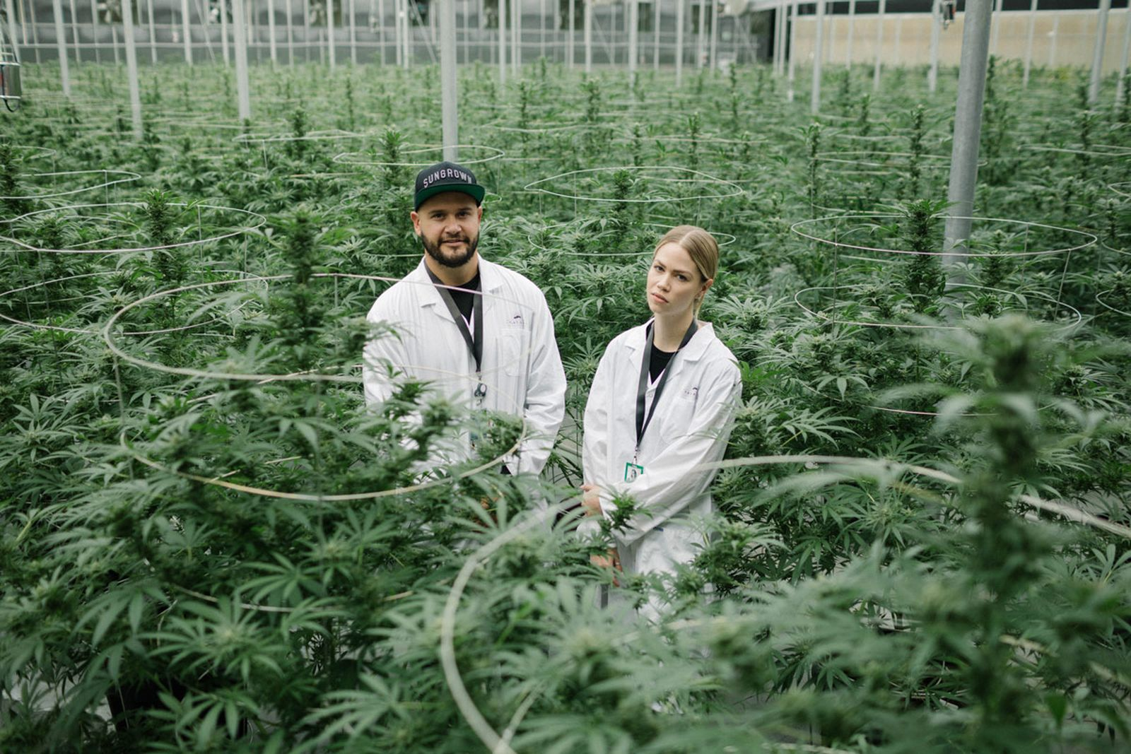 green new deal tantalus labs