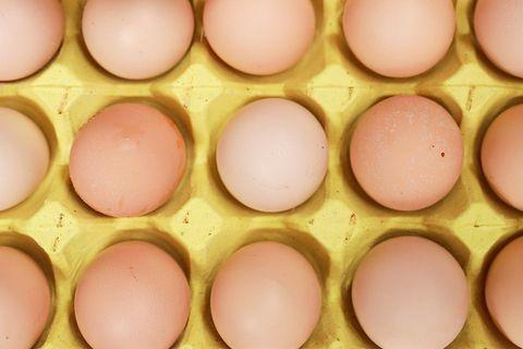 kylie jenner egg memes