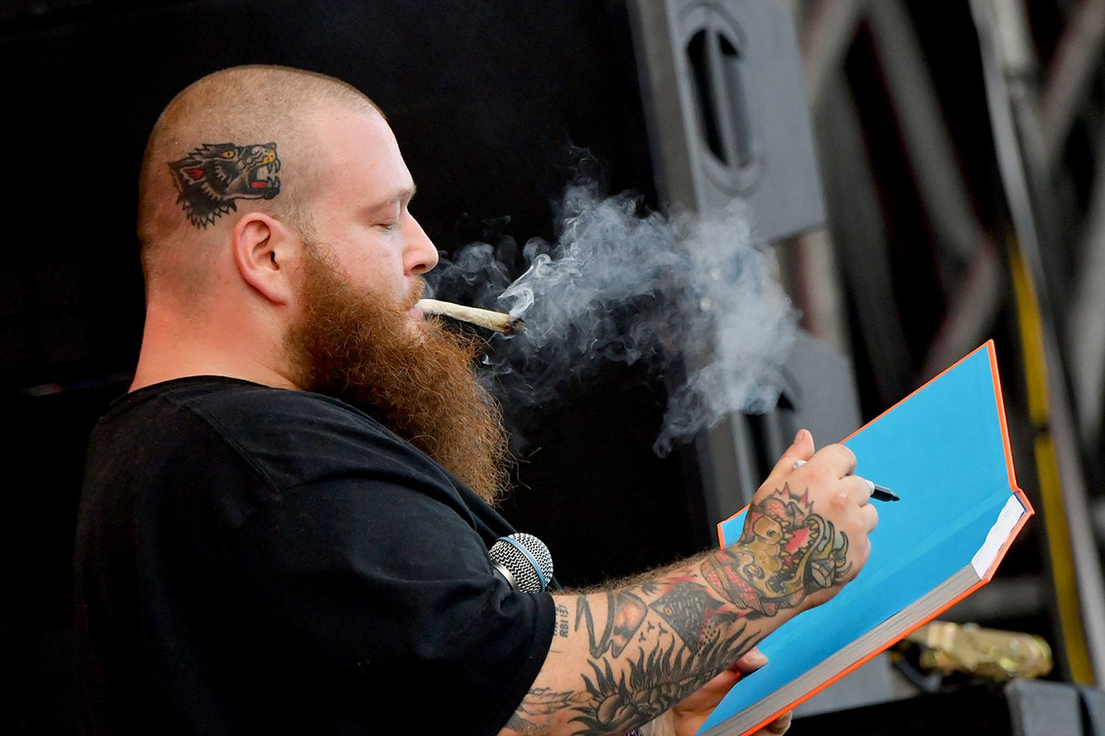 Stoned Beyond Belief action bronson