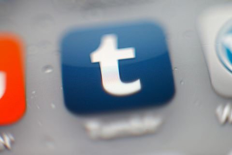 tumblr bans all adult content NSFW