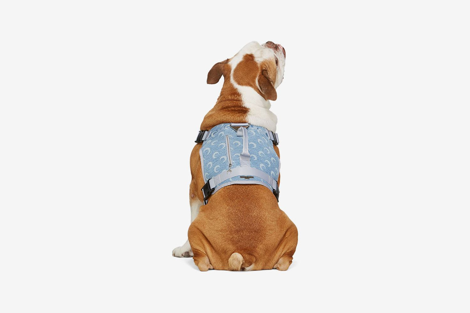 SSENSE Exclusive Upcycled Denim Dog Harness