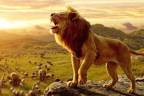 disney lion king soundtrack beyonce donald glover elton john