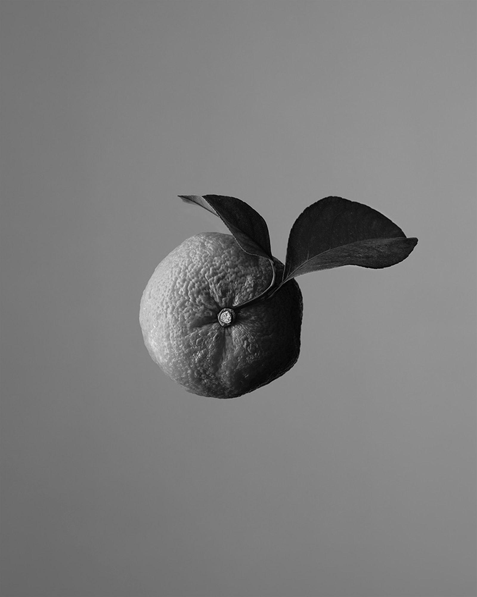 aesop-othertopias-fragrance-collection-07