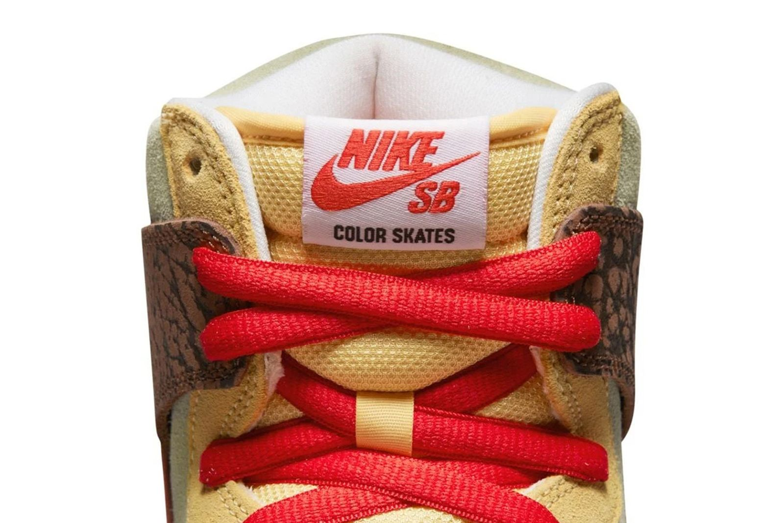color-skates-nike-sb-dunk-high-release-date-price-03