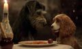 Disney Shares First Trailer for 'Lady and the Tramp' Live-Action Remake