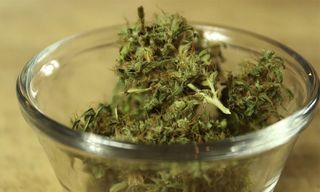 7 Reasons Why Eating Weed Is Actually Good for Your Health